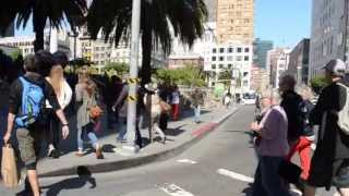 Download A Walk in Downtown San Francisco Video