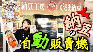 Download 尋找唯一的納豆自動販賣機~沒想到有賣巧克力納豆!! 【日本販賣機】 Video