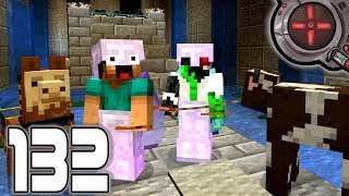 Download Hermitcraft VI - A Dangerous Journey - Episode 132 Video