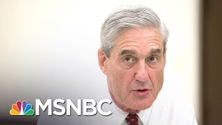 Download IRS 'Specialized, Secretive Investigative' Unit Aiding Robert Mueller | The Last Word | MSNBC Video