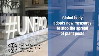 Download Global body adopts new measures to stop the spread of plant pests Video