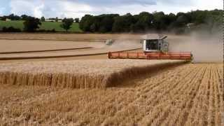 Download Biggest combine harvesters in the world! Video