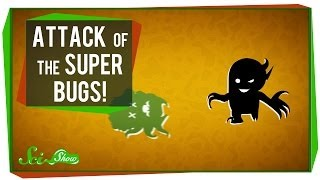 Download Attack of the Super Bugs Video