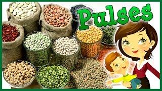 Download अनाजो के नाम इंग्लिश में | Pulses Name In English | Educational Videos For Kids | Lehren Kids Video