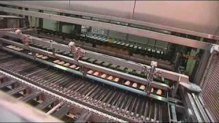 Download Baking bread in a factory (7-11yr pupils) Video