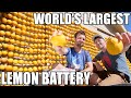 Download World's Largest Lemon Battery- Lemon powered Supercar Video