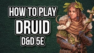 Download HOW TO PLAY DRUID Video