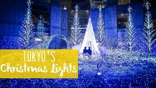 Download Christmas Lights in Tokyo (Winter illuminations) 東京のイルミネーション Video