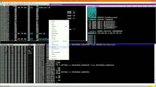 Download Reverse Engineering Basics Video