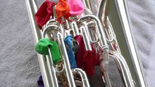 Download How to Clean a Brass Instrument (with balloons!) Video