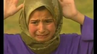 Download Zeitgeist: The Movie (2010) Video