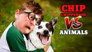 Download Chip vs Animals (Chippy's Mittens, Mr Scraps, Oscar The Octopus, Lyle The Turkey, etc.) Video