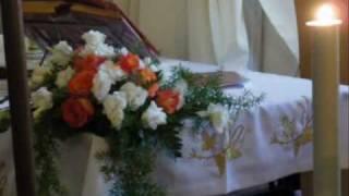 Download Festeggiamenti in onore di S. Annibale Maria Di Francia 1° GIugno 2010 Video