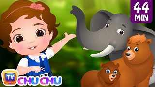 Download Going To the Forest | Wild Animals for Kids and More Learning Songs & Nursery Rhymes by ChuChu TV Video