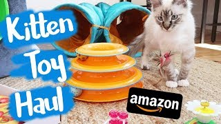 Download I Bought Weird Cat Toys From Amazon Video