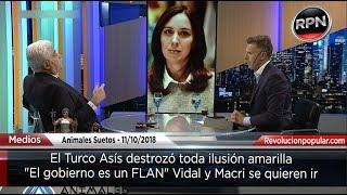 Download El Turco Asís destrozó toda ilusión amarilla ″El gobierno es un FLAN″ Video