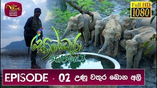 Download Sobadhara - Sri Lanka Wildlife Documentary | 2019-03-08 | Elephant Video