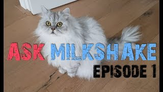 Download ASK MILKSHAKE Episode 1 - What Is The Meaning Of Life? Video