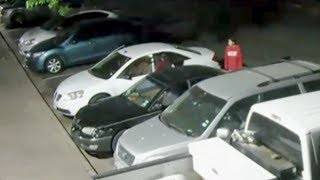Download Monitoring company worker helps police catch thieves Video