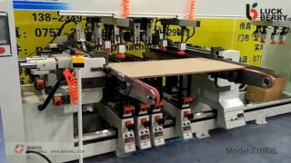 Download JESH DRILL Z10BXL Woodworking 10 rows multi spindles boring machine for wood Video