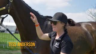 Download Behind the Scenes with Team NZ #MMBHT 2018 Video