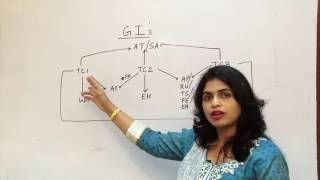 Download Global Indicators - GI- IATA Video