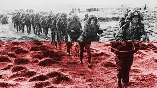 Download The Falklands War, 1982 - Professor Vernon Bogdanor Video