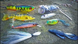 Download ROULETTE Lure Fishing CHALLENGE - Texas Bass Battle Video