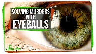 Download Victorian Pseudosciences: Solving Murders with Eyeballs Video