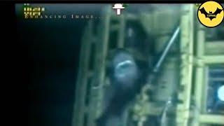 Download Top 5 Des Mégalodons Capturées en Video Dans la Réalité! Partie 2. Video