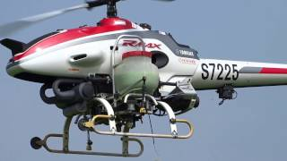 Download Spraying paddy bugs in rice farm using helicoptor. Video