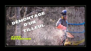 Download Démontage d'un Tilleul avec rétention Video