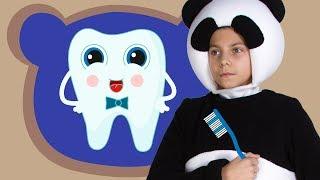 Download ЗУБКИ - Три Медведя - Веселая песенка про зубную щетку и зубки для детей малышей Video