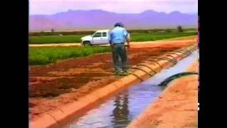 Download Saving Water in Agriculture Surface Irrigation Video