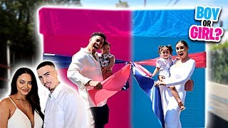 Download SURPRISE GENDER REVEAL...IS IT A BOY OR GIRL!?!? Video