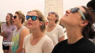 Download Bench Banter: Southern Stars at the Taj Video