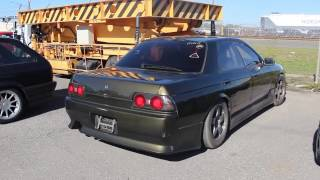 Download Importing a Skyline! Video