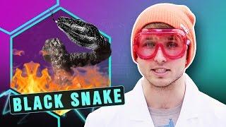 Download DIY BLACK SNAKE FIREWORK EXPERIMENT (Smosh Lab) Video