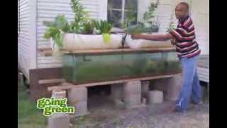 Download Aquaponics: What is Aquaponics? Using Fish, Plants And Rocks To Replicate Earths Natural Cycles Video