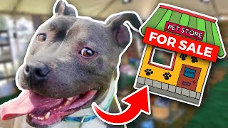 Download Buying a Homeless Dog an ENTIRE Pet Store! - Challenge Video