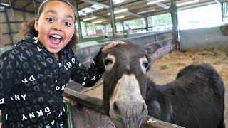 Download Kids Family Trip To The Farm Feeding Animals - Playground Fun - Kids Educational video Video