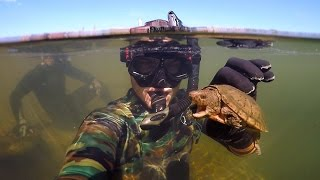 Download Found Knife, Razor Blade and $50 Swimbait Underwater in River! (Freediving) Video