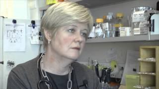 Download Kidney Cancer Canada ″Ask the Expert″ - Dr Jennifer Knox, Medical Oncologist Video