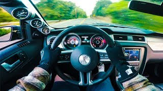 Download CAMMED GT500 Super Snake Pulls, Exhaust, Pov | Super Car VLOG! Video
