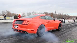 Download 2015 Mustang Ecoboost 4Cyl is Shockingly Quick! - Tune Only by JLP Video