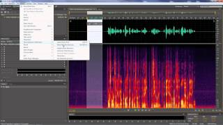 Download Adobe Audition - Removing generic noises that run through entire clips Video