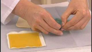 Download 5 Hydrogel Dressing.m4v Video