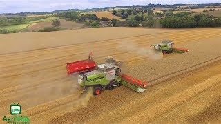 Download Hopkins Agriculture Wheat Harvest 2018 2x Claas Lexions 780TT Video