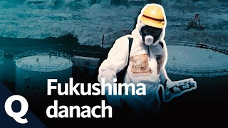 Download Fukushima – Ende nicht in Sicht (Ganze Doku) | Quarks Video