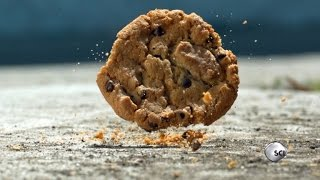 Download Science Shows The 5-Second Rule is Real Most of the Time Video